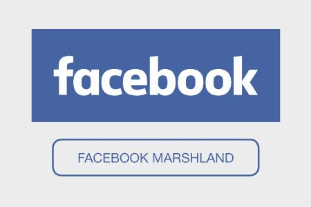 facebook buttons-marshland
