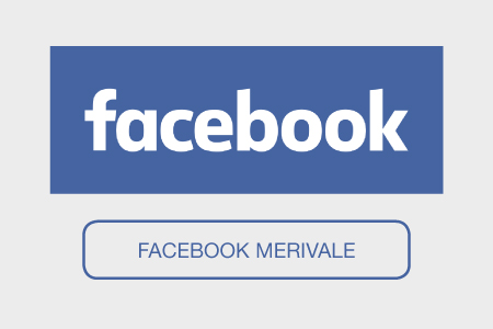 facebook buttons-merivale